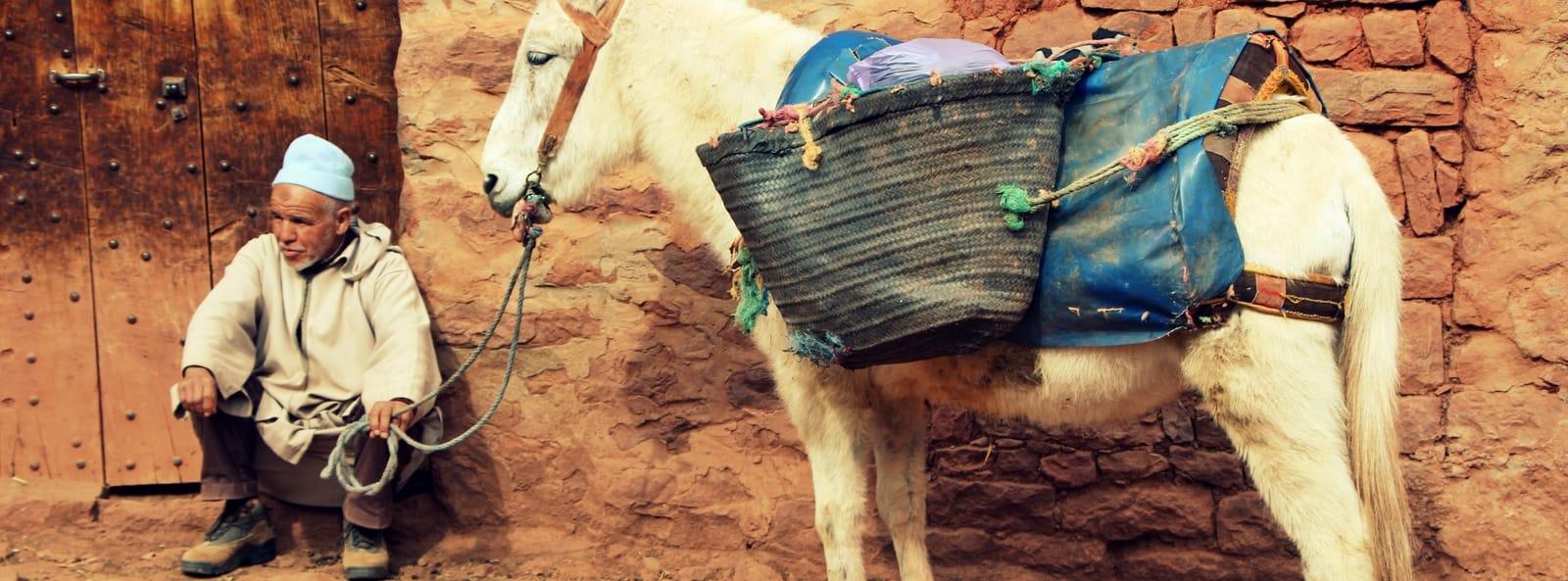 Morocco 342